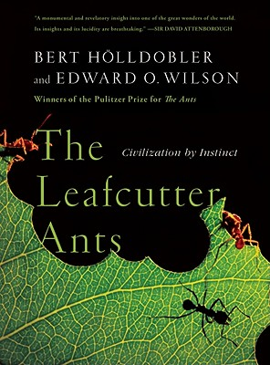 The Leafcutter Ants By Holldobler, Bert/ Wilson, Edward O.